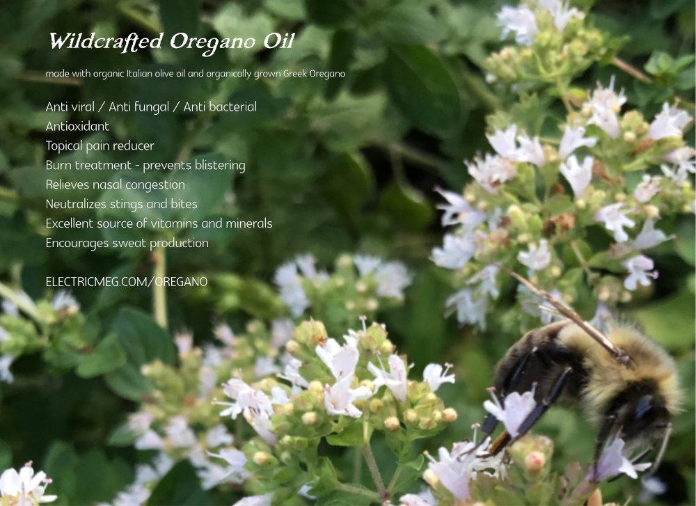 wildcrafted oregano oil